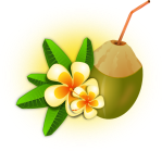 tropical-flower-with-coconut-drink-hi