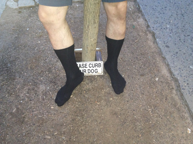 curb your dog - blacksocks - photo by Chris Paleo