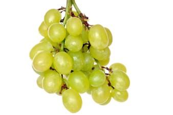 grapes 4087788