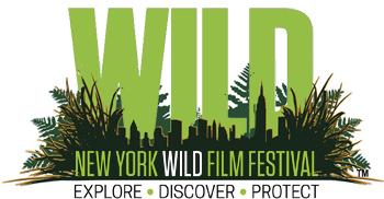 NY Wild
