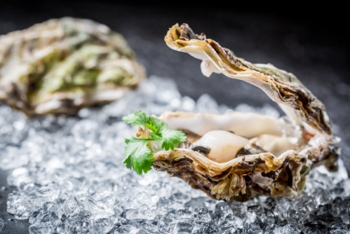 gia on the move oysters food holidays
