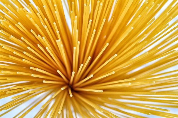 spaghetti macro photography